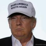 Make America Great (White) Again