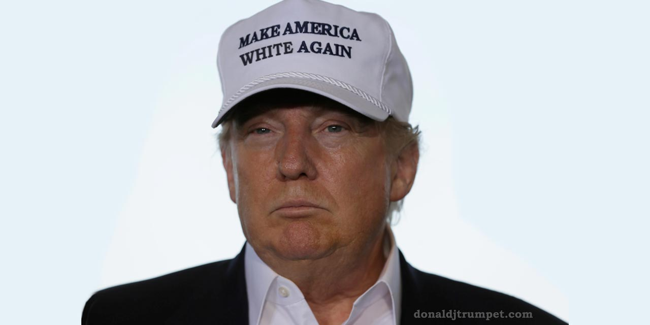 Image result for make america white again