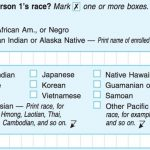 Should Mulatto People Be Classified As Our Own Race?